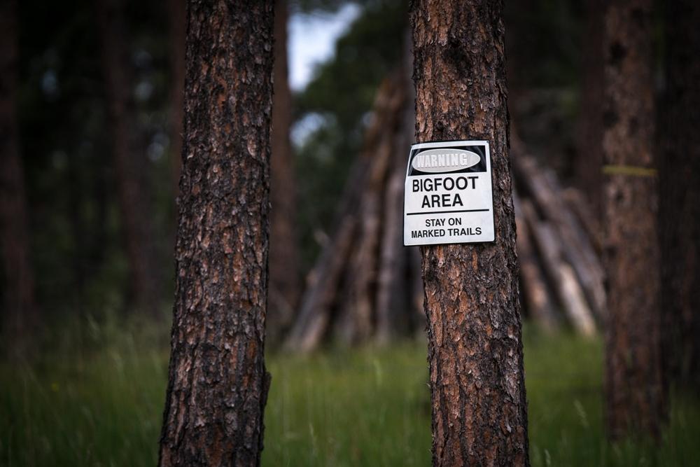 Bigfoot Museum and Statue – Willow Creek, California