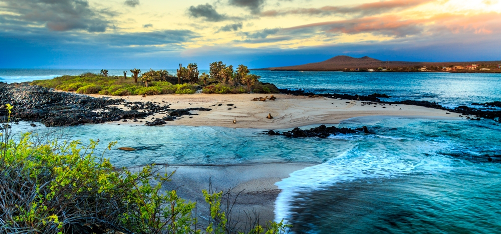 Galapagos Island Tours: When to Go