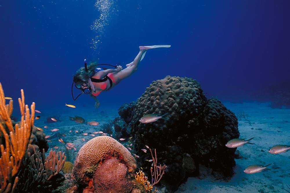 St. Croix U.S. Virgin Islands